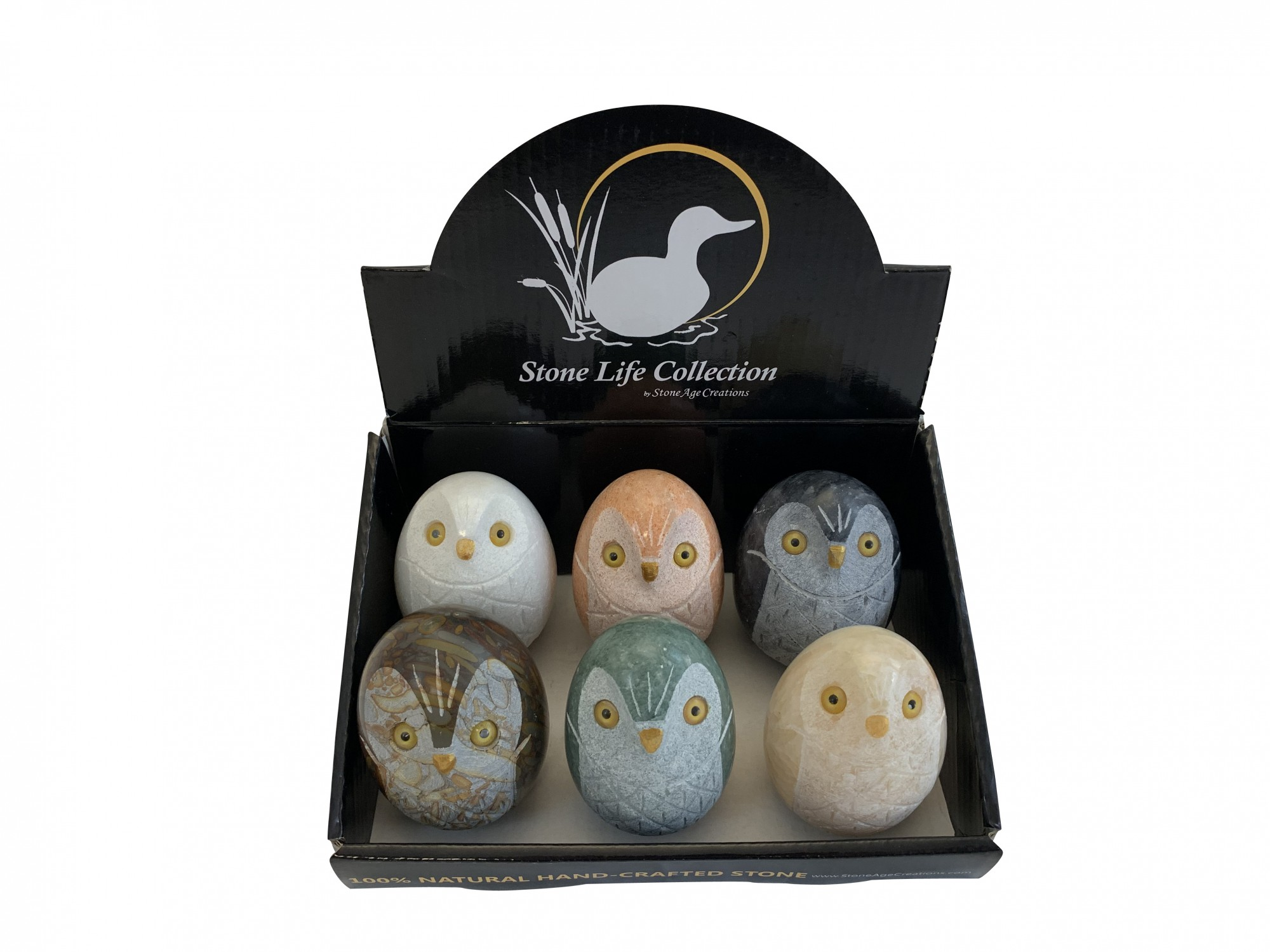 Owl Hatchling Family Display Box